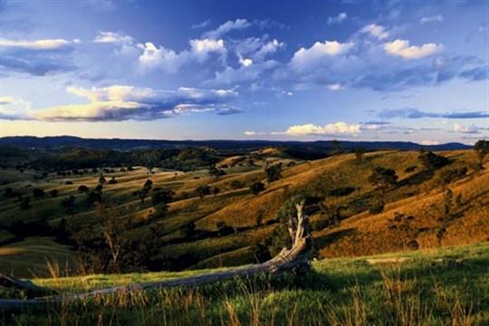 Mudgee countryside