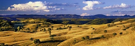 Mudgee country