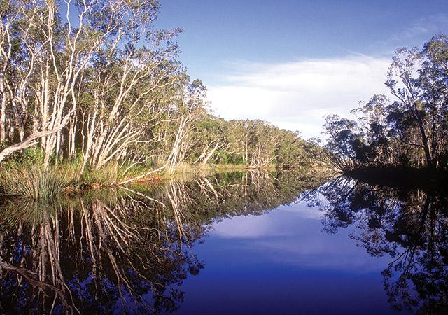Noosa River Queensland