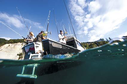 DICKEY CUSTOM 850 FISHABILITY