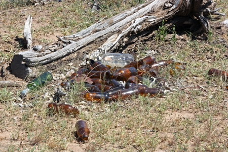 Bottles Dumped In The Bush