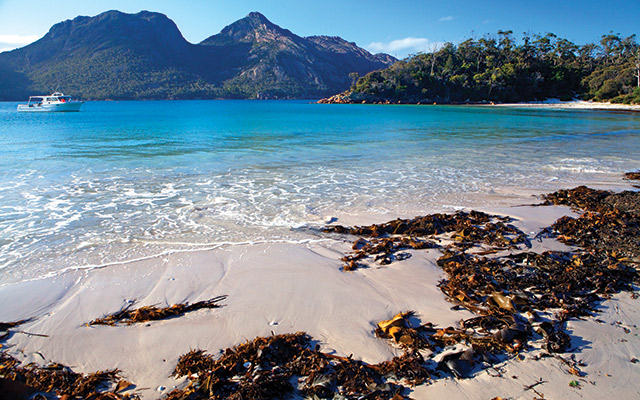 The Beach At Wineglass Bay