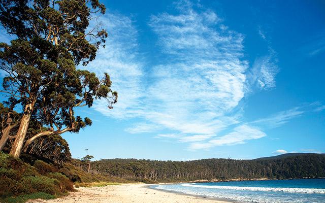 Fortescue Bay Tasmania