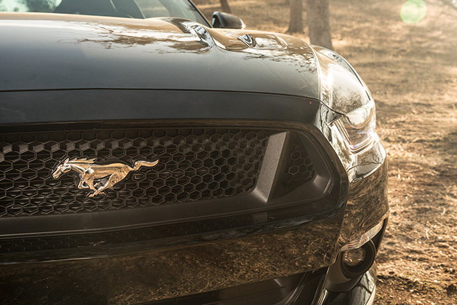 Ford -mustang -grille