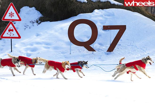 Audi -Q7-Logo -Snow