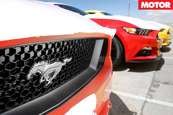Ford mustangs grills
