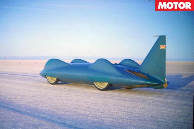 Bluebird -in -the -desert