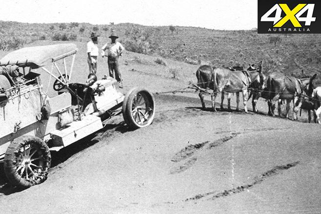Donkeys pullig car
