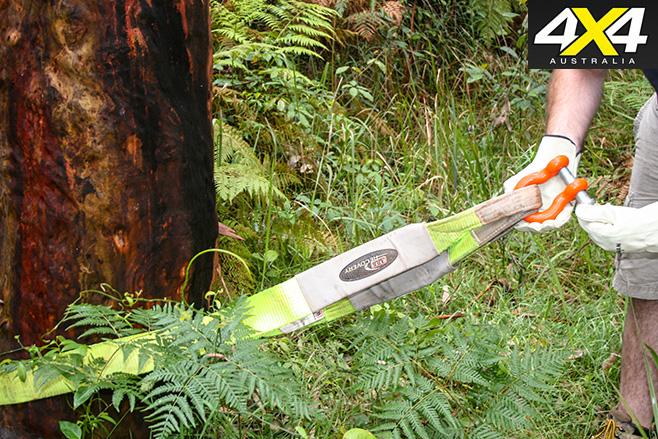 Tree protector -strap