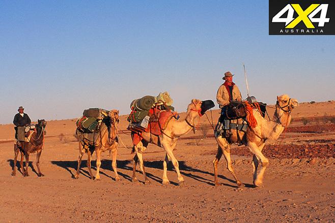 Arriving in birdsville on camels