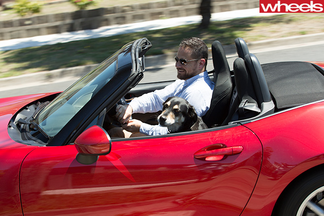 Glenn -Butler -driving -Mazda -MX-5-with -pet