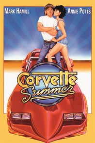 Corvette Summer 1978 Cover