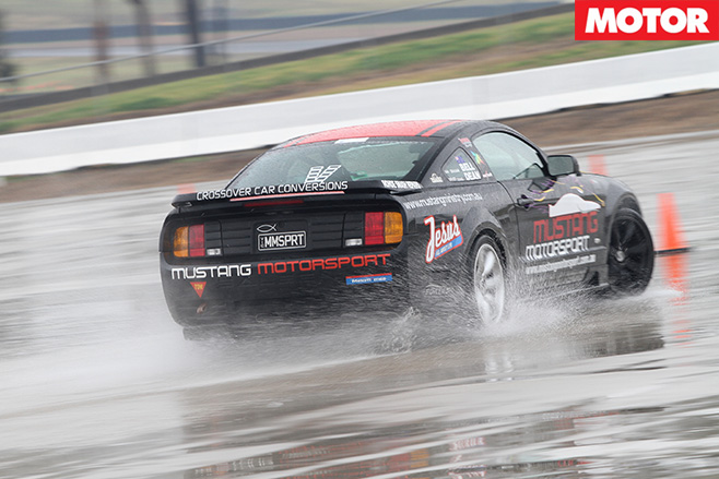 Mustang -in -the -wet