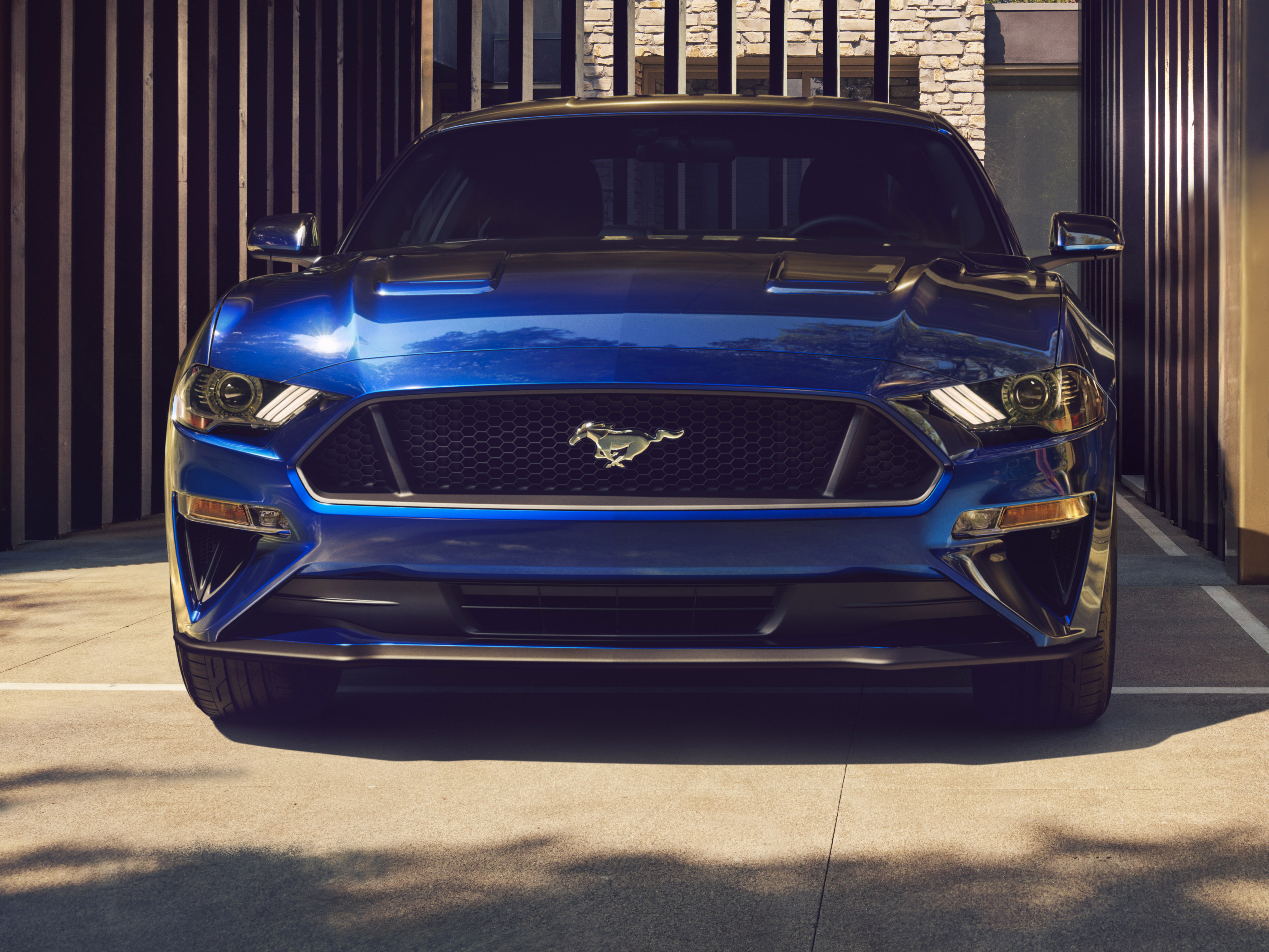 _new Ford Mustang V Gt With Performace Pack