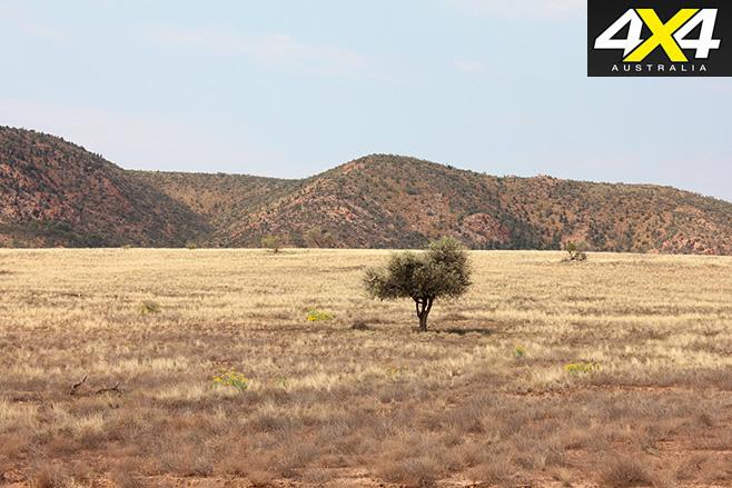 Rugged -land
