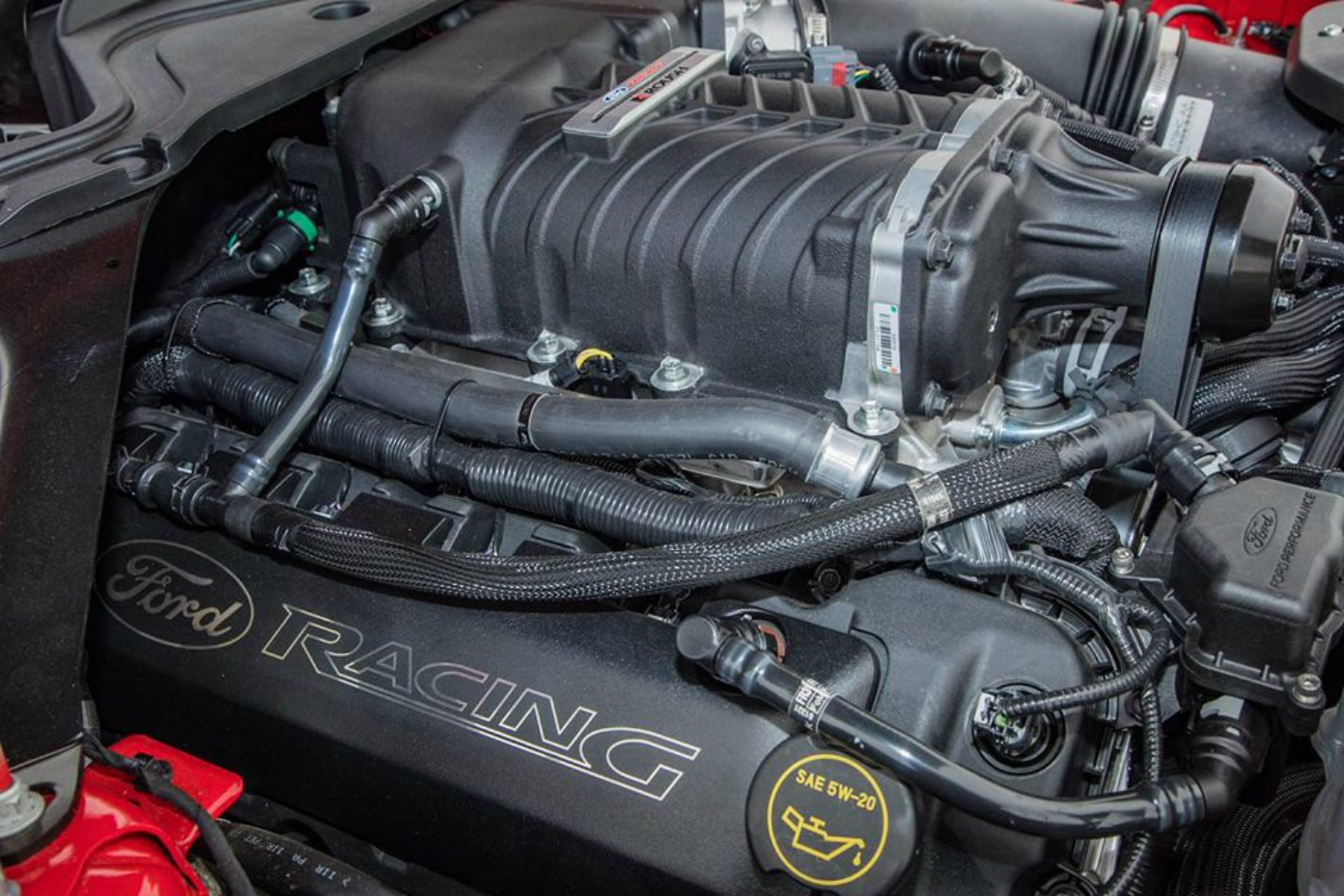 Russell Ingall Ford Mustang engine