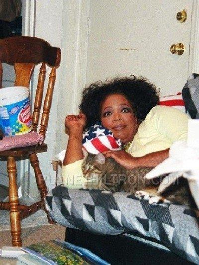 Oprah after her talk show was sadly never picked up by the network so her bestie Gayle suggest she get a pet. Her new-found love for felines inspired her to open a cat hotel.