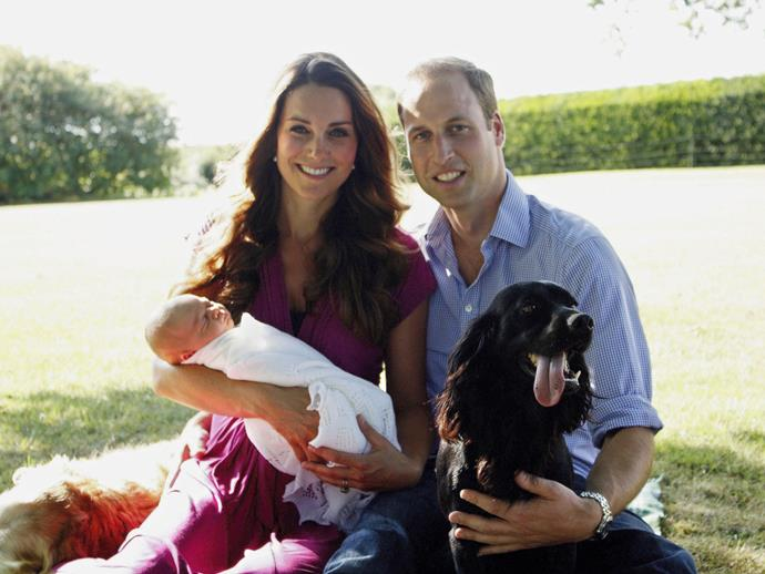 When we wished we could be reincarnated as one of Kate and Will's dogs, just enjoying the country air, and totally unbothered by a baby Prince George stealing the limelight.