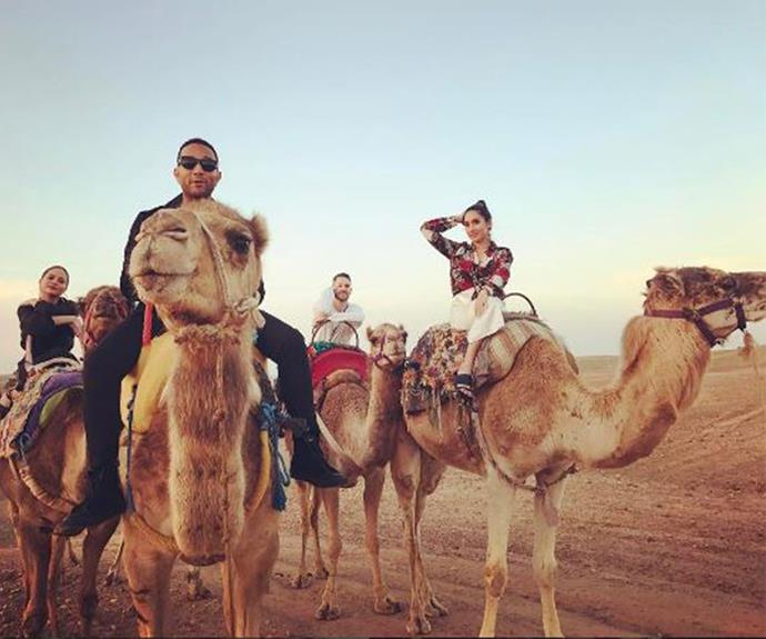And friends and camels at the same time... #squadgoals