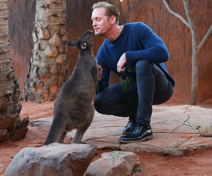 A Swede and a roo, what's not to love?