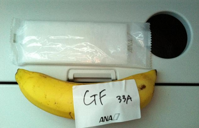 Is this the worst gluten-free airline meal ever?