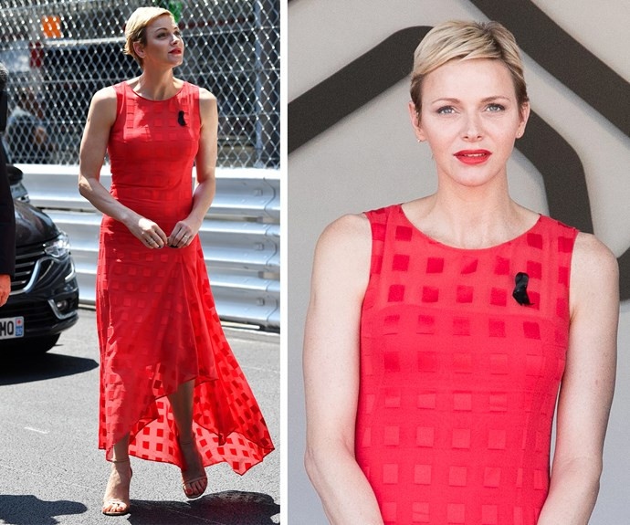 The former Olympic swimmer dazzled in an Akris gown.