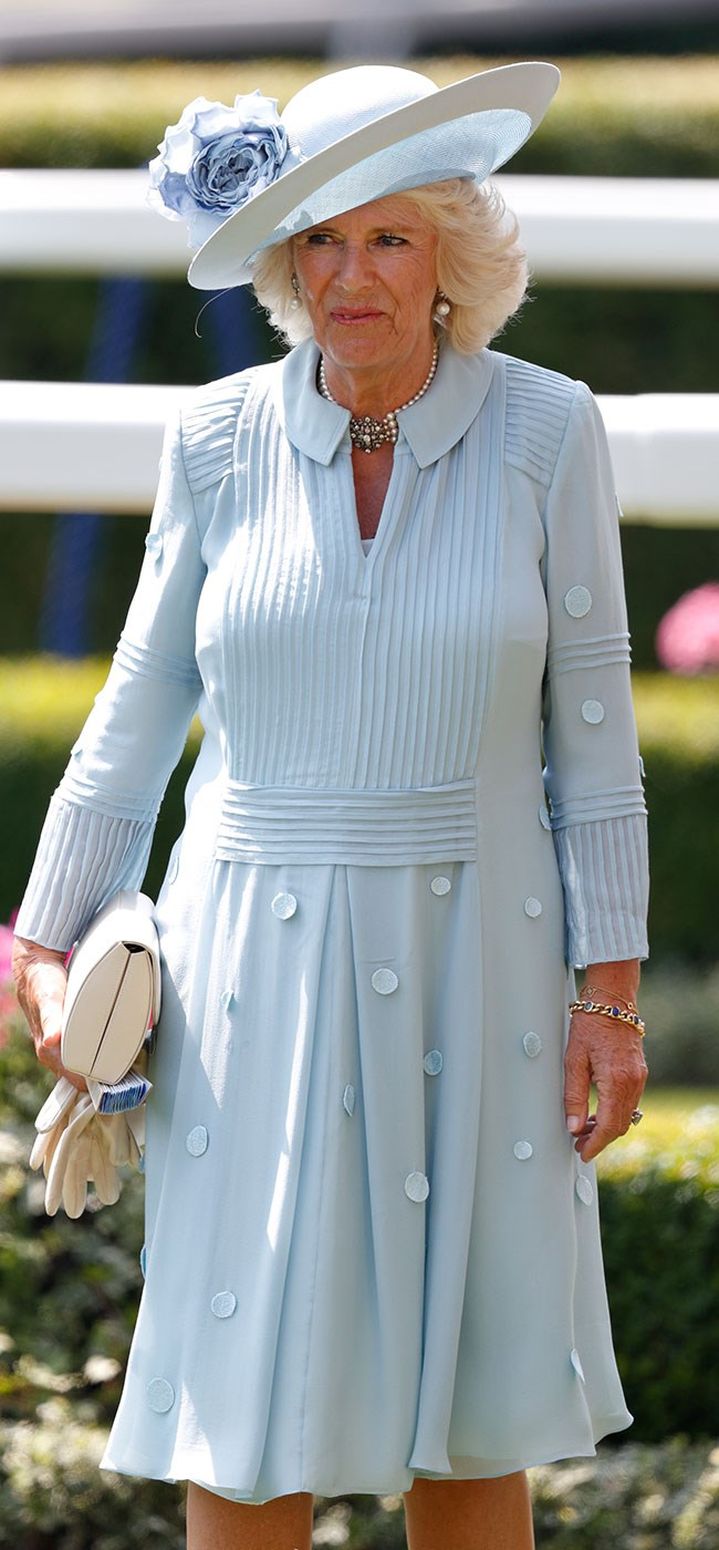 **8. Camilla, Duchess of Cornwall.** This baby blue chiffon dress and pastel pink accessories is a truly dreamy pairing.