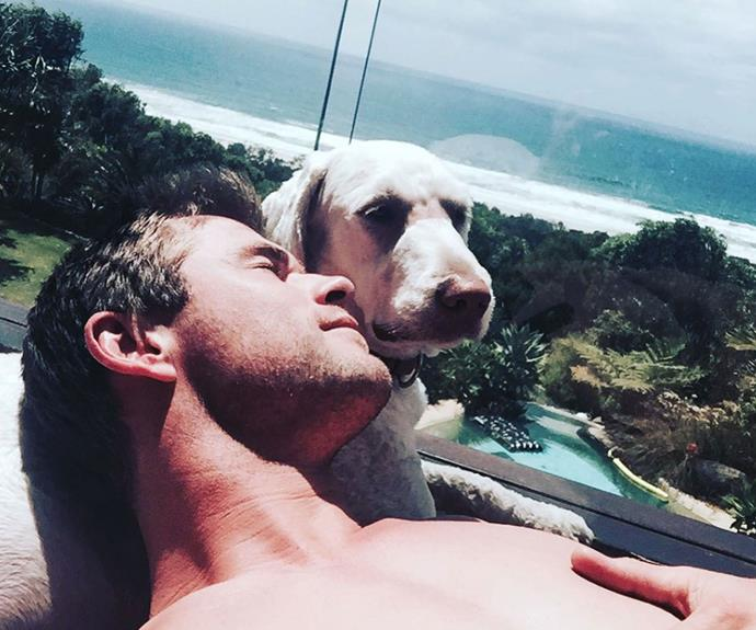 **Pet Goals:**  The only thing better than a photo of Chris, is a photo of Chris and his pupper.