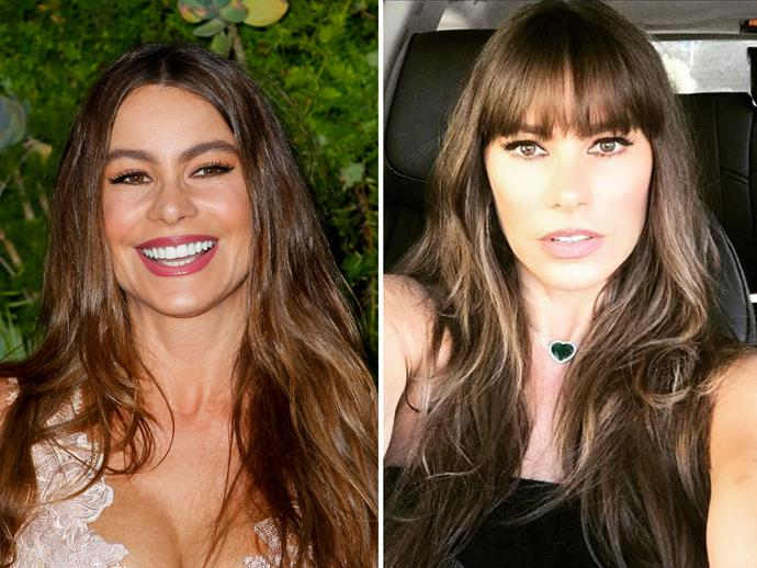 "To mark her 45th birthday on July 10, *[Modern Family](http://www.nowtolove.com.au/tags/modern-family|target=""_blank"")'s* Sofia Vergara chopped a fringe into her hair - and no this isn't just a clip-in. ""New haircut. Gracias!! #kellyklain"" she wrote, thanking her long-time hair stylist. Amazing, just when you think she couldn't look any more gorgeous."