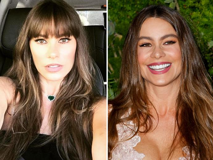 "To celebrate her 45th birthday on July 10, 2017, [*Modern Family](http://www.nowtolove.com.au/tags/modern-family|target=""_blank"")*'s Sofia Vergara chopped a fringe into her hair. It was the first time she'd made such a dramatic move with her hair, and ultimately she looks gorgeous either way."