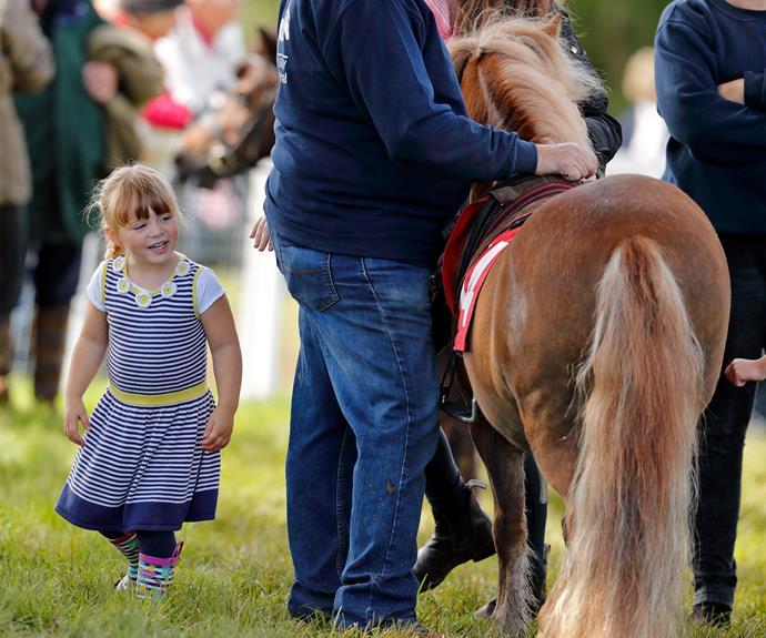 Someone's found the Shetland pony.