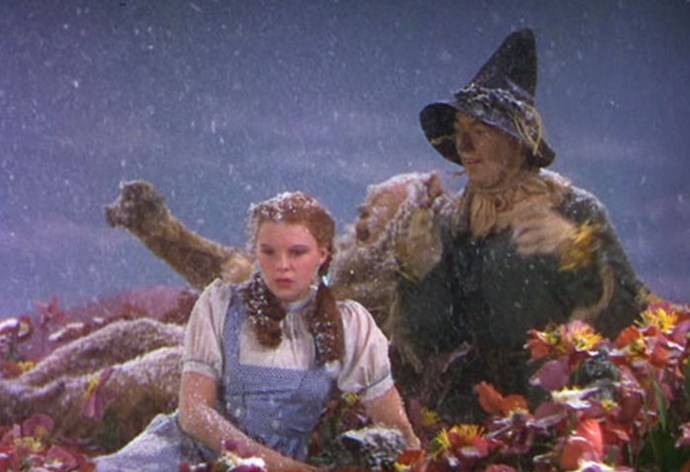 "In one scene, Dorothy and the Cowardly Lion fall asleep in a poppy field, where it begins to snow. The ""snow"" used was actually potent chrysotile asbestos, despite its known health hazards."