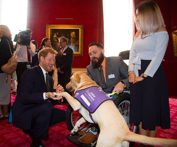 Harry met with former marine Phil Eaglesham and his service dog, Cooper.