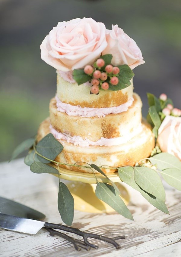 Not only are Naked Cakes not nice to look at, they also don't look like they'd taste very nice.  Everyone knows the best part of the cake is the icing - these cakes are just huge chunks of sponge.   Don't ruin your big day just to take shabby chic to a whole new Instagram level.