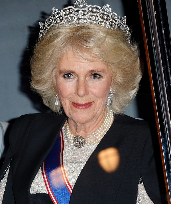 Camilla wore the Boucheron tiara from The Queen's collection.