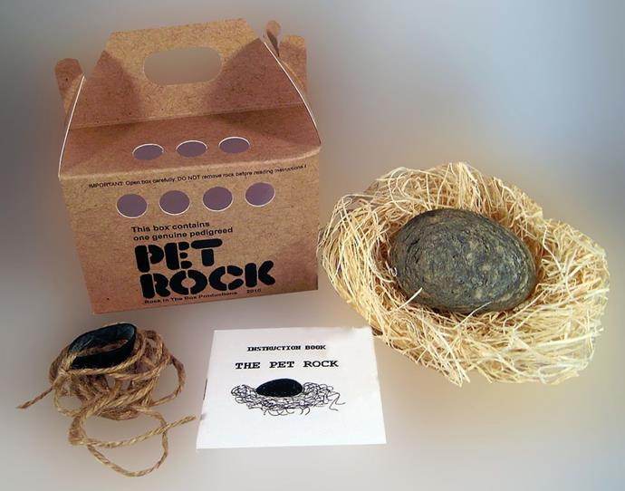 **Pet Rocks** Did you have a Pet Rock? It seems so silly now, but back in 1975 we loved ours! It came in a cardboard box packed with straw and breathing holes, and was a fad that lasted a surprising six months!