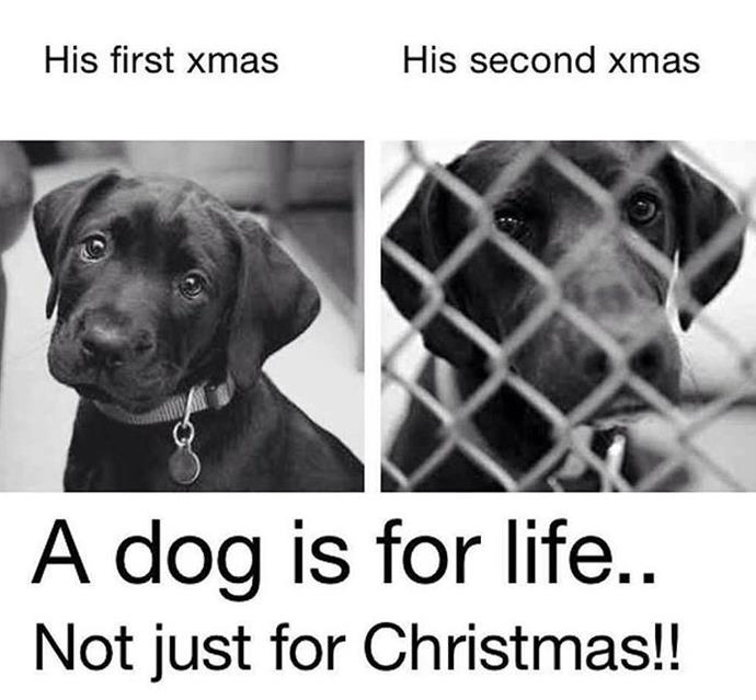 An important message to think about this Christmas.