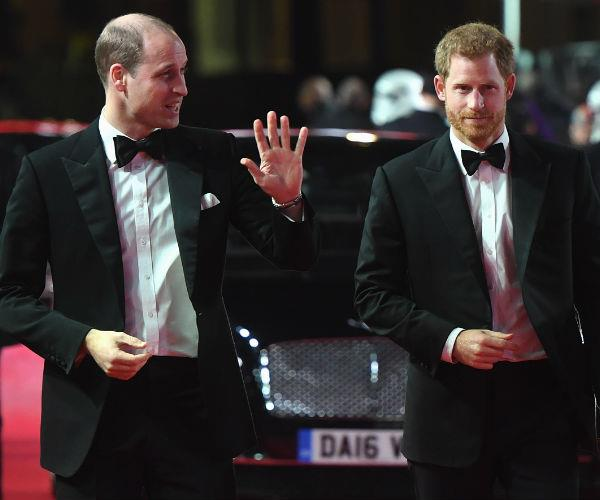 William and Harry wore their red carpet best for the star-studded event.