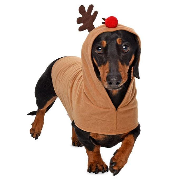 **Reindeer Dog Costume $14.99** Furry and Festive. Doggy dress ups for the holiday season.