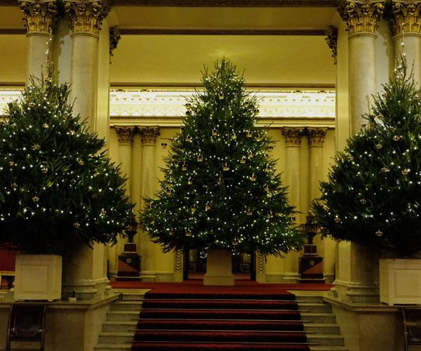 How many Christmas trees does on royal need?