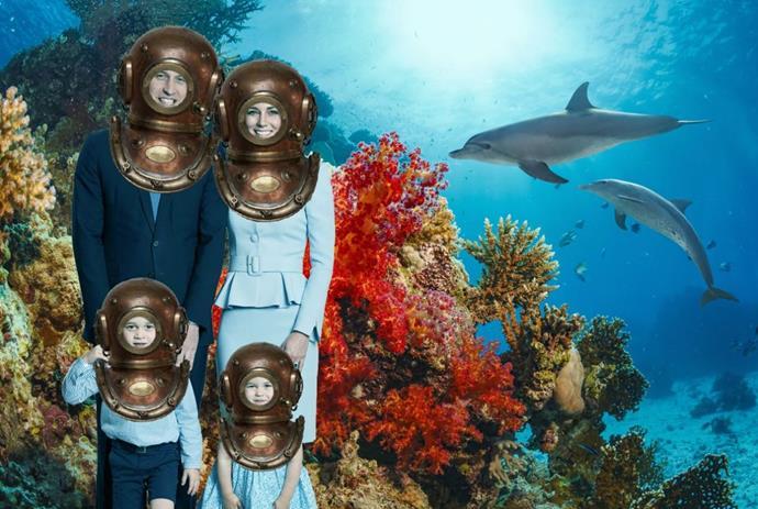 Under the sea! via @Ciara_Knight