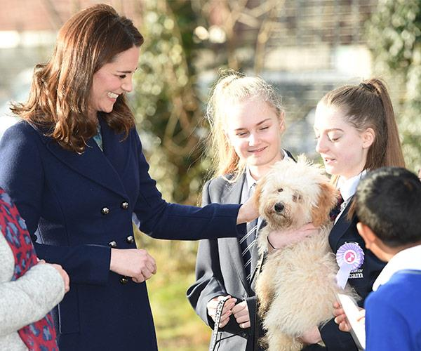 Kate is dazzled by four-month-old Bear, a puppy in training to be a therapy dog.