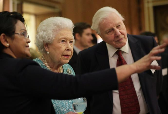 The Queen and Attenborough discussing all things environment and the Commonwealth.