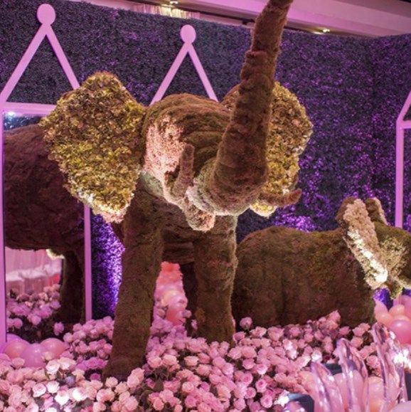 Hedges sculpted into elephants made a cute and fun backdrop for selfies.