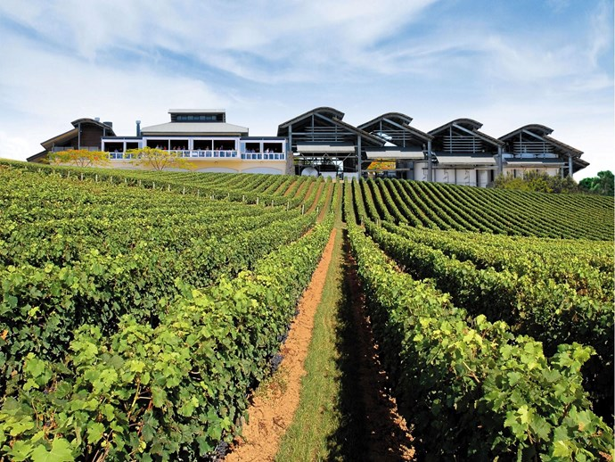 Sirromet winery at Mt Cotton.