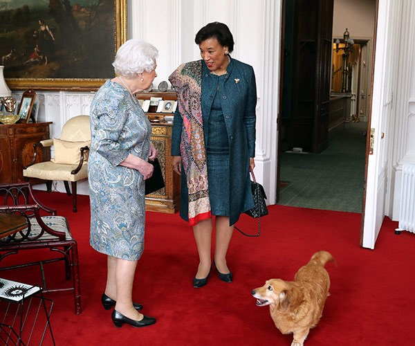 Whisper the corgi drops in on the Queen and Commonwealth Secretary-Genera, Baroness Patricia Scotland.