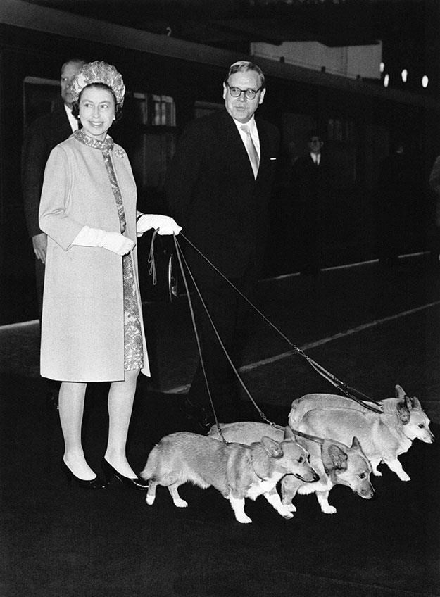 The Queen with her corgis in 1969.