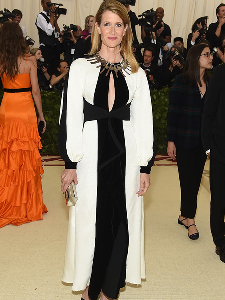 *Big Little Lies* star Laura Dern kept her Met Gala look demure.