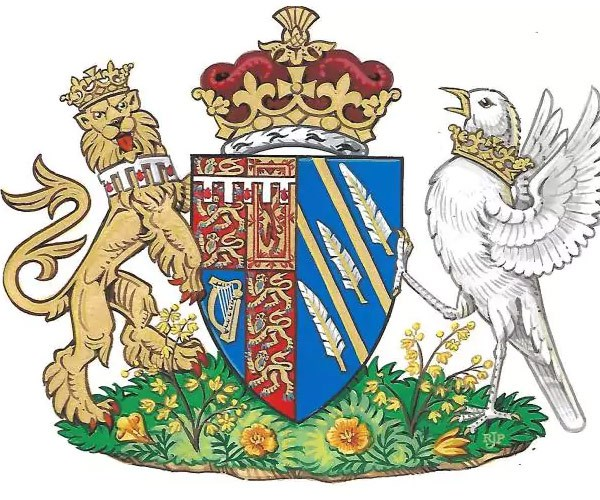 Meghan's coat of arms came out this week!