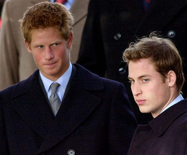 Before they became Dukes, the royal brothers were known as Harry and William Wales.